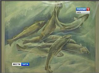 Выставка забайкальской художницы Ольги Чернецовой открылась в Чите